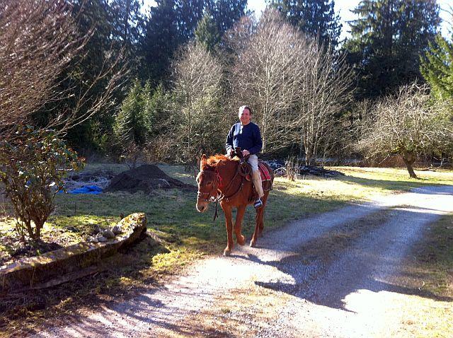 20150308-horse04.jpg