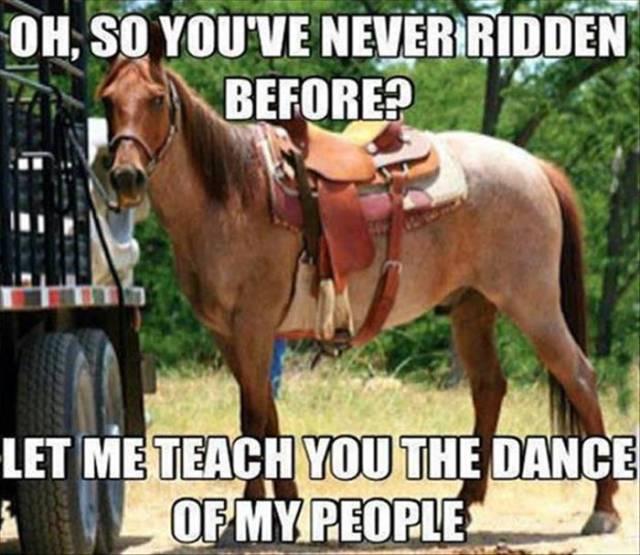 20150624-horse.jpg