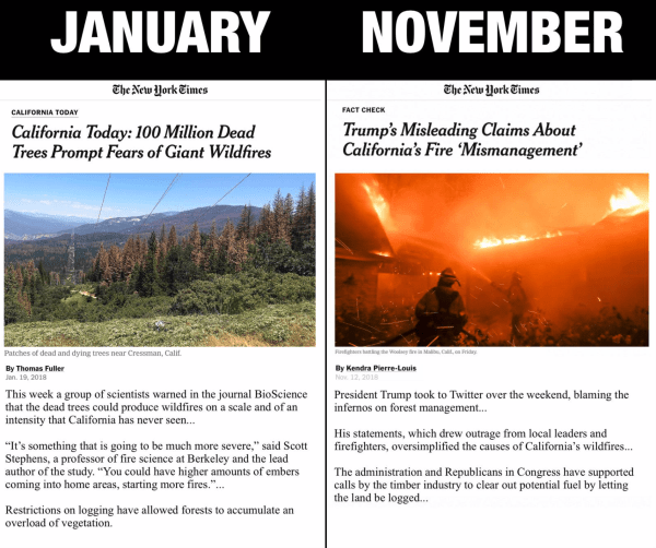 20181127-nyt.png