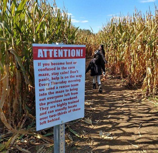 20191008-corn.jpg