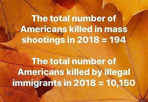 20191229-illegals.jpg