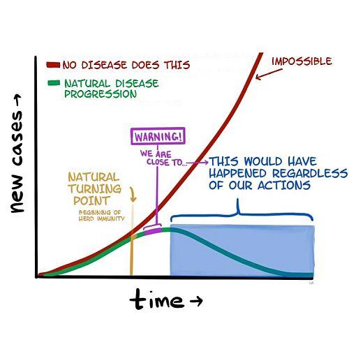 20200416-disease.jpg