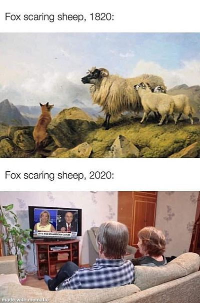 20200825-fox.jpg