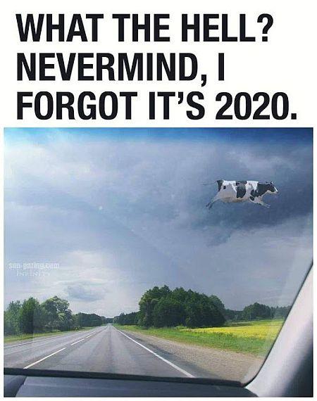 20200830-2020.jpg