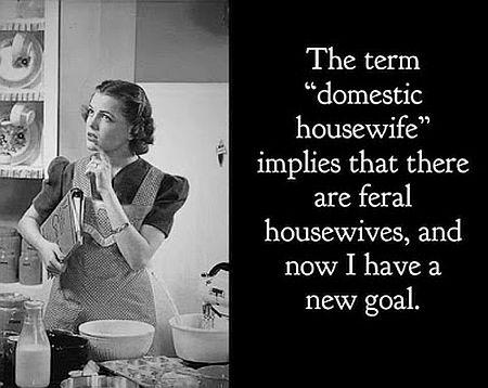20210204-housewife.jpg