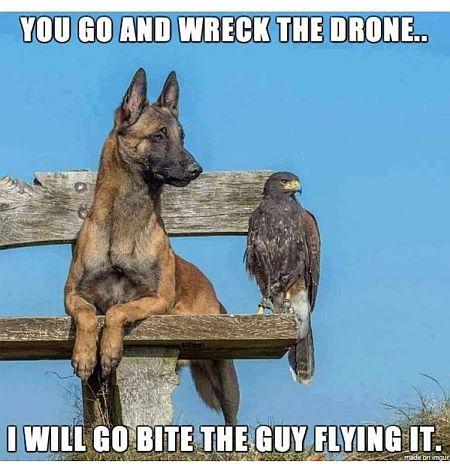 20210523-drone.jpg